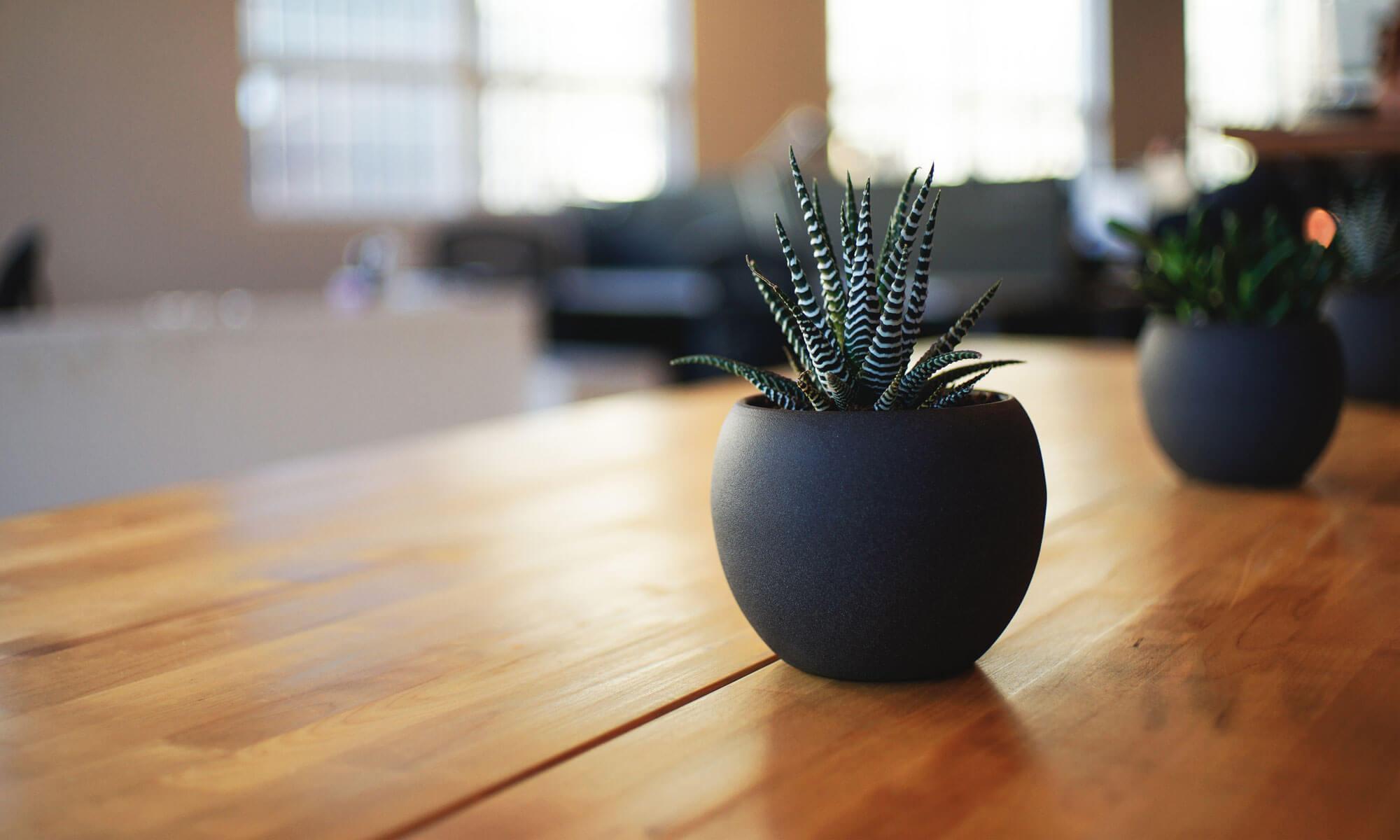Советы по уборке квартир и химчистке ковров